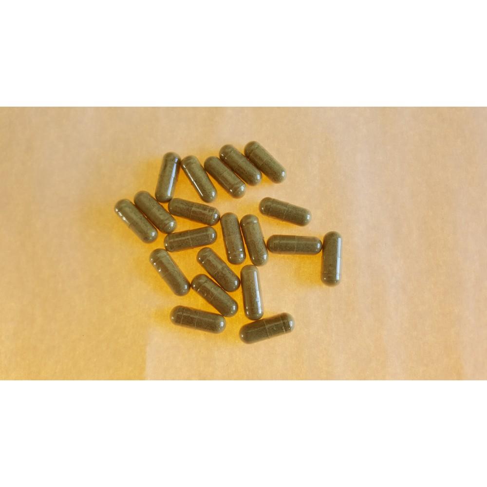 Boezemvriendjes Extra l Borstvoedingskruiden l 40 capsules  Borstvoeding Goedkope Goedkoop Borstvoedingproductie Verhogen
